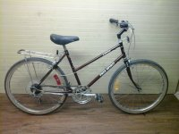 Free Spirit FS400 bicycle - StephaneLapointe.com