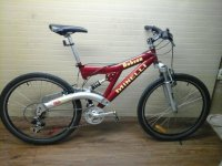 Minelli Robson bicycle - StephaneLapointe.com