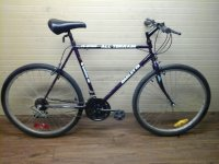 Barletta All Terrain bicycle - StephaneLapointe.com