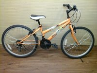Norco Roxy bicycle - StephaneLapointe.com