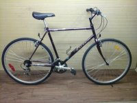 Raleigh Highlander GS bicycle - StephaneLapointe.com